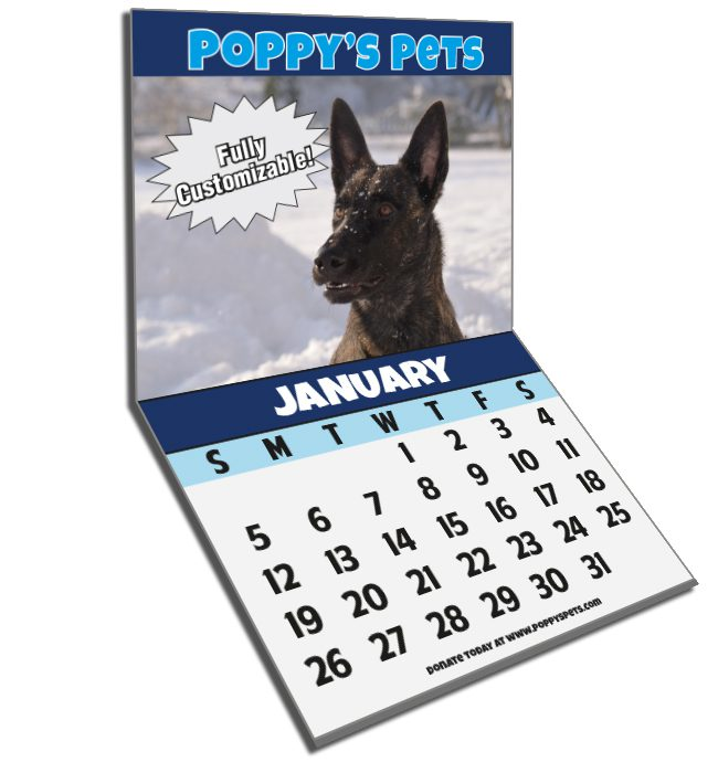 custom monthly calendar, puppies and kittens calendar